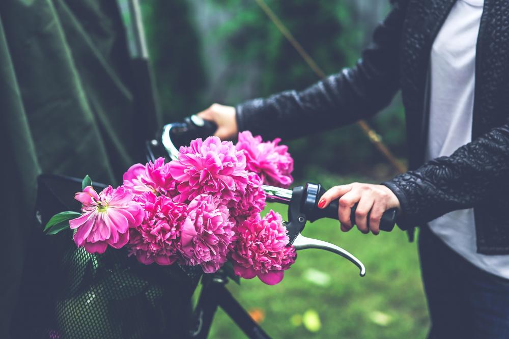 Tử vi tuần mới từ 28/9-4/10 của 12 con giáp: Tý sóng gió thị phi, Ngọ nhân mưa tài lộc, Dậu vận đào hoa nở rộ - Ảnh 1
