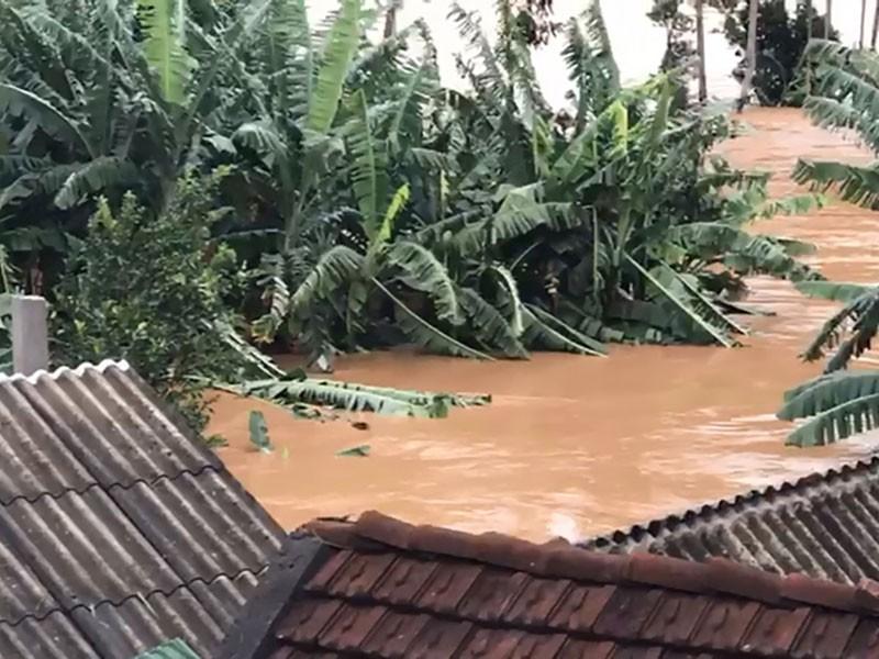 Quảng Nam, Quảng Ngãi tan hoang sau bão số 9 - Ảnh 4
