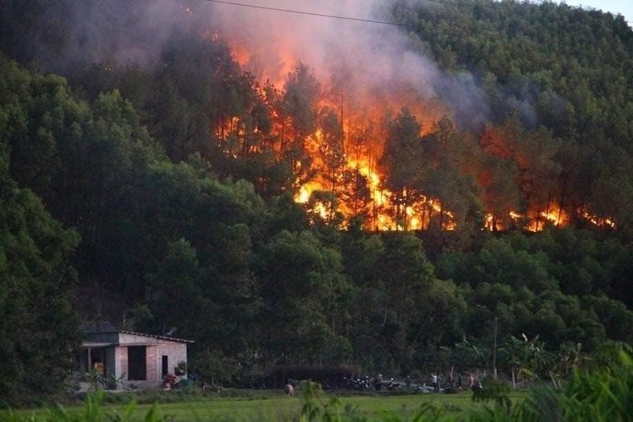 Cư dân mạng chấn động trước hình ảnh rừng Hà Tĩnh chìm trong 'biển lửa' - Ảnh 2