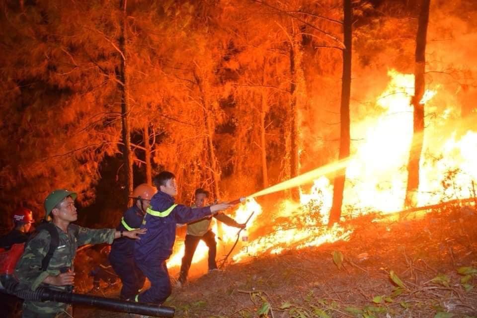 Cư dân mạng chấn động trước hình ảnh rừng Hà Tĩnh chìm trong 'biển lửa' - Ảnh 3