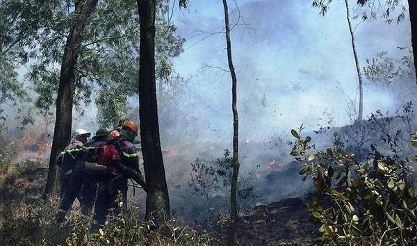 Miền trung có mưa dông rải rác, nguy cơ cháy rừng vẫn rất cao - Ảnh 1