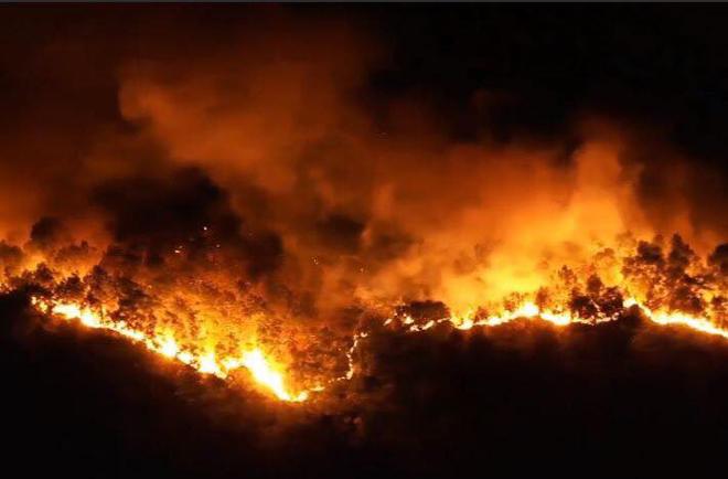 Xử lý thế nào nghi phạm đốt rác gây cháy rừng kinh hoàng ở Hà Tĩnh?  - Ảnh 2