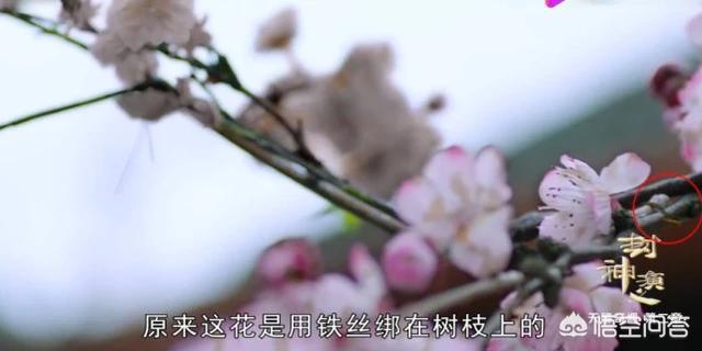 'Cười ngất' vì phim cổ trang Trung Quốc lộ 'sạn siêu to khổng lồ', lừa khán giả - Ảnh 10
