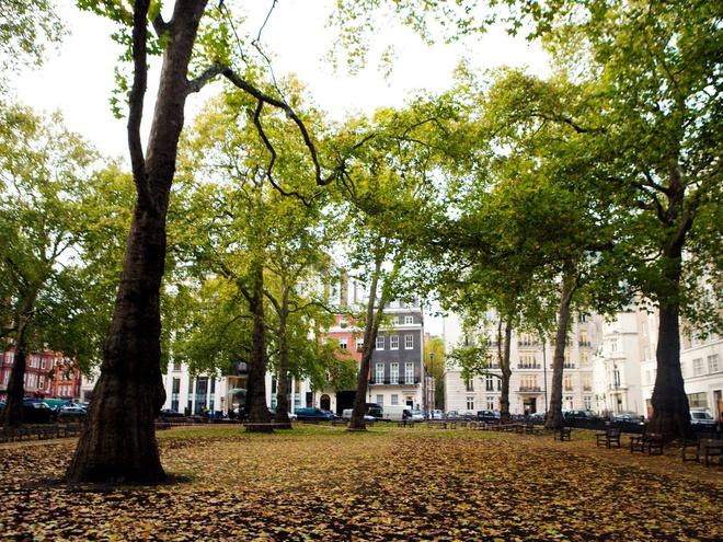 Nhà trong hẻm giá 64 triệu USD ở trung tâm London - Ảnh 2