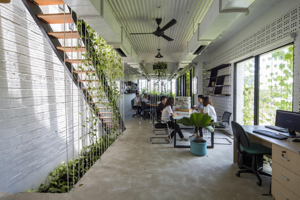Tòa nhà văn phòng gợi nhớ về tuổi thơ ở làng quê - Ảnh 6