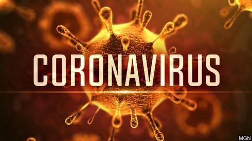 Vì sao virus Corona chỉ 'thích' tấn công phổi? - Ảnh 1