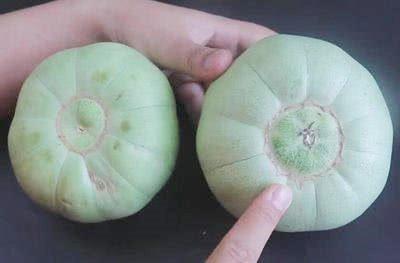Khi mua dưa lê, nhìn vào rốn quả, thấy điều này chị em nhanh tay mua ngay kẻo hết - Ảnh 1