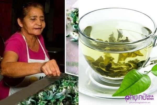 Uống ly trà này 3 lần/tuần, người phụ nữ 66 tuổi cả đời không bệnh tật - Ảnh 1