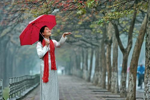 Dự báo thời tiết ngày 12/2: Bắc Bộ mưa xuân, trời rét, Nam Bộ nắng nóng - Ảnh 1