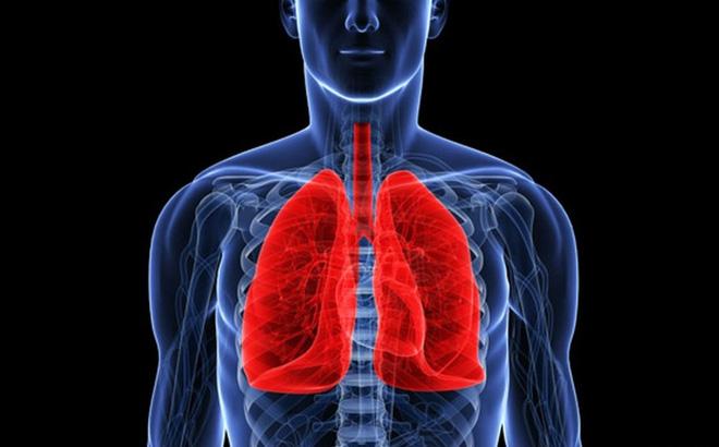 Bảo vệ sức khỏe của hai lá phổi là điều cần thiết phải làm để bảo đảm cơ quan này luôn hoạt động tốt