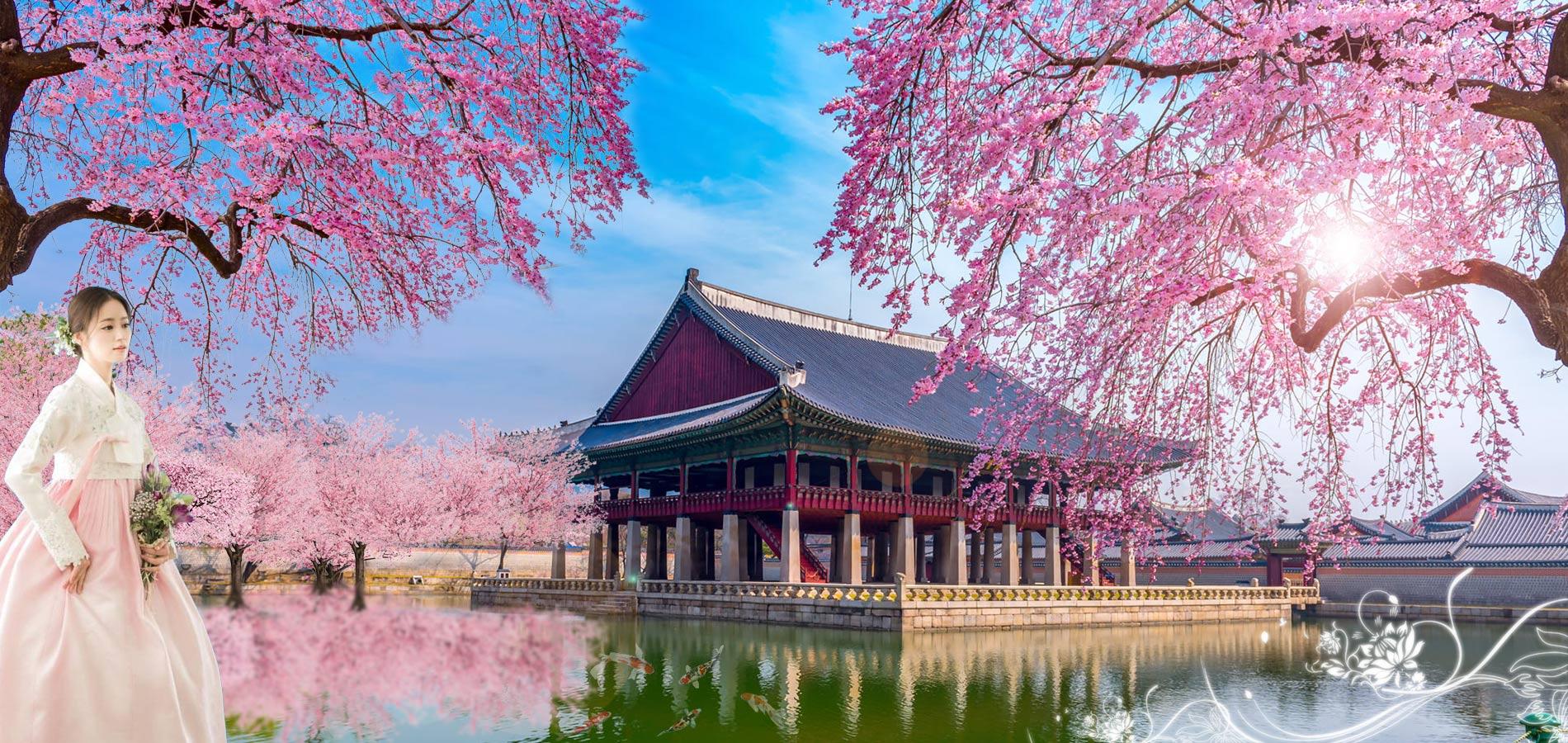 Xu hướng chọn tour du lịch sau Tết Kỷ Hợi 2019 - Ảnh 5