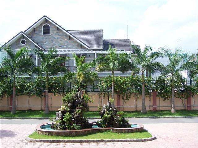 Cây cau giúp tăng cường nguồn năng lượng dương cho ngôi nhà.