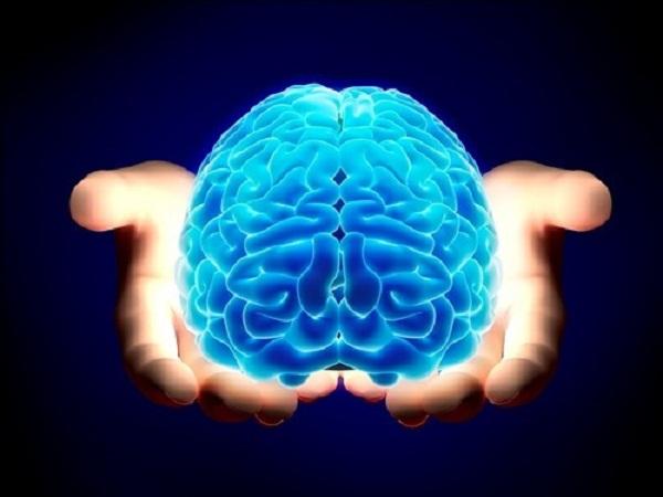 Kiểm tra độ nhạy cảm cơ thể dựa vào não bộ - Ảnh 1