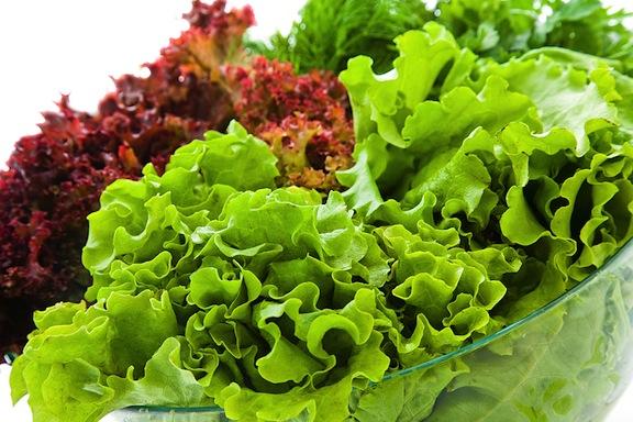 Khi nào nên bắt đầu cho trẻ ăn rau sống? - Ảnh 1