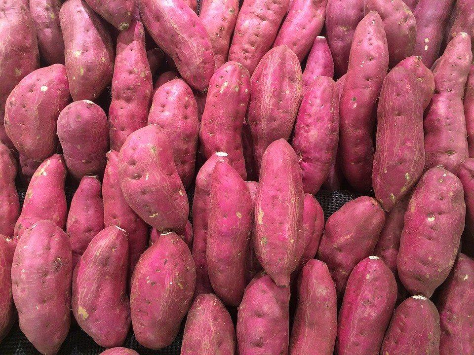 5 thực phẩm dưỡng ẩm tốt cho da, ngừa bong tróc - Ảnh 4