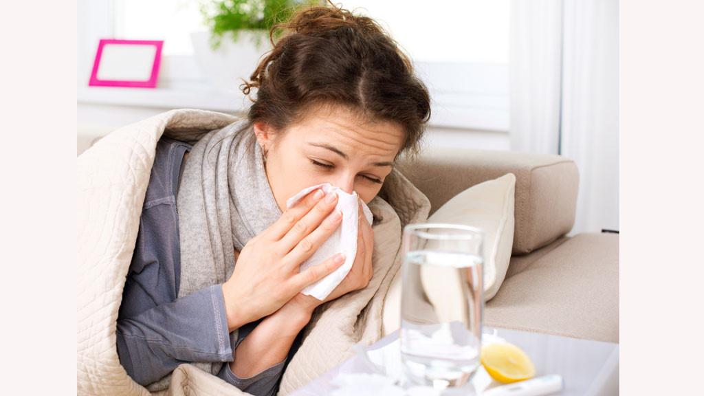 Rau kinh giới có tác dụng trị cảm mạo, ngoại cảm và chứng viêm mũi dị ứng