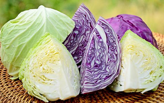 Nên chọn bắp cải có bẹ màu sáng trắng, lá giòn và cứng. Nếu mua bắp cải tím thì bẹ phải có màu tím sẫm