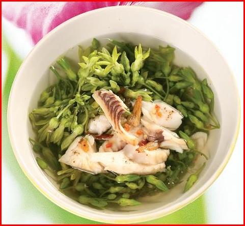 Canh hoa thiên lý nấu cá diếc có tác dụng giúp người bệnh thanh nhiệt, giải độc và an thần, dễ đi vào giấc ngủ và ngủ say giấc