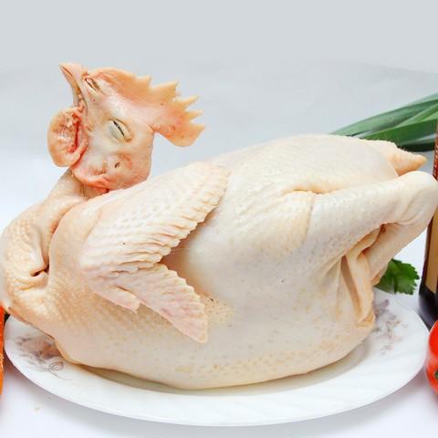 Thịt gà tươi sẽ có màu sắc hồng hào, tươi sáng. Sờ tay nhẹ vào miếng thịt sẽ cảm nhận độ đàn hồi cao