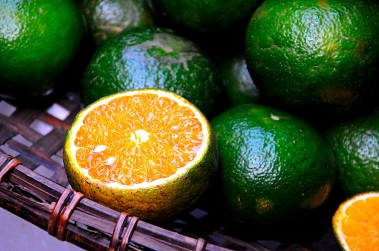 Một vài mẹo nhỏ giúp bạn lựa được những quả cam tươi ngon, mọng nước và ngọt ngây