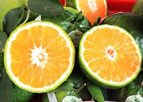 Cam là một trong những loại quả giàu vitamin C, rất tốt cho sức khỏe. Đây là loại quả cần phải bổ sung hàng ngày để tăng sức đề kháng cho cơ thể