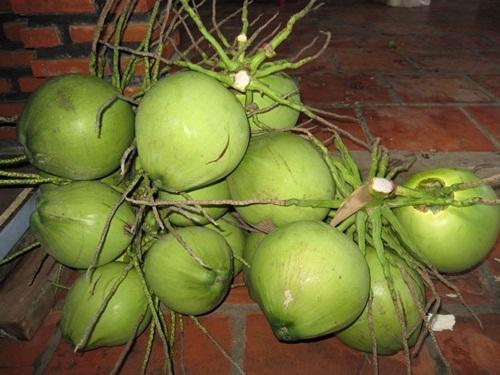 Da trắng, sạch mụn và thân hình mi nhon trông thấy nhờ uống nước dừa liên tục 7 ngày mỗi khi đói bụng - Ảnh 1