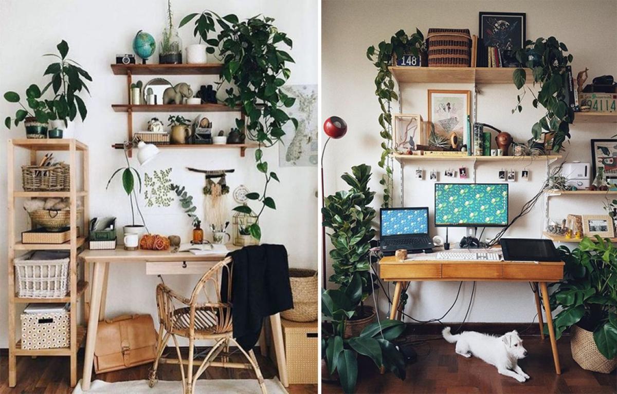 Ý tưởng trang trí giúp bàn làm việc của bạn hòa vào thiên nhiên - Ảnh 2