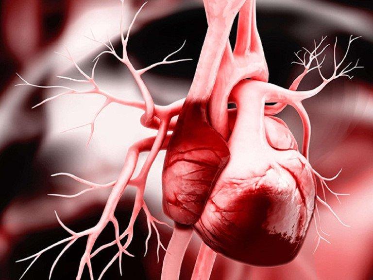 Có 3 đặc điểm này ở vùng đầu, rất có thể là dấu hiệu của nhồi máu cơ tim, mọi người nhất định phải biết - Ảnh 1