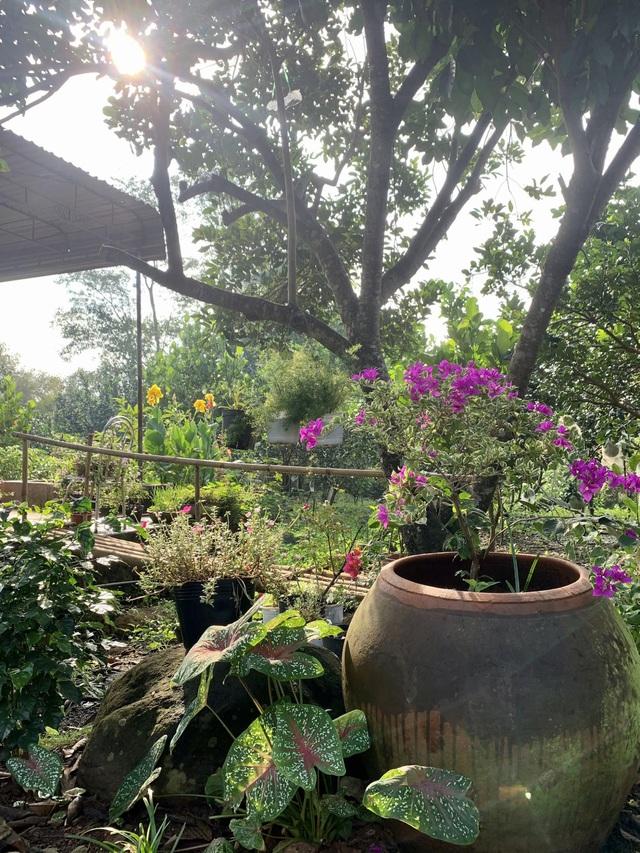 Nhà vườn 'đổi gió' rộng 4.000m2 của ông bố Sài Gòn dành tặng vợ con - Ảnh 13