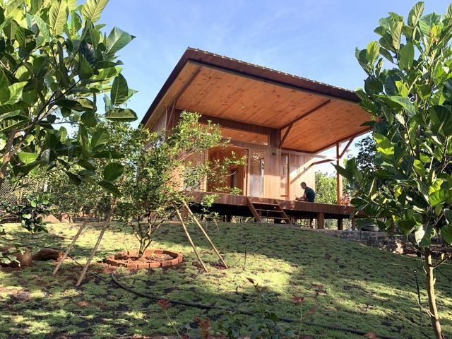 Nhà vườn 'đổi gió' rộng 4.000m2 của ông bố Sài Gòn dành tặng vợ con - Ảnh 3