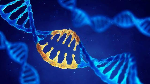 Bố mẹ cảnh giác với 5 loại ung thư này, khả năng di truyền cho con cao - Ảnh 4