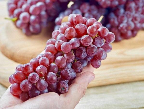 6 loại trái cây không thể thiếu trong mùa dịch, vừa giàu dinh dưỡng lại tốt cho sức khỏe - Ảnh 1