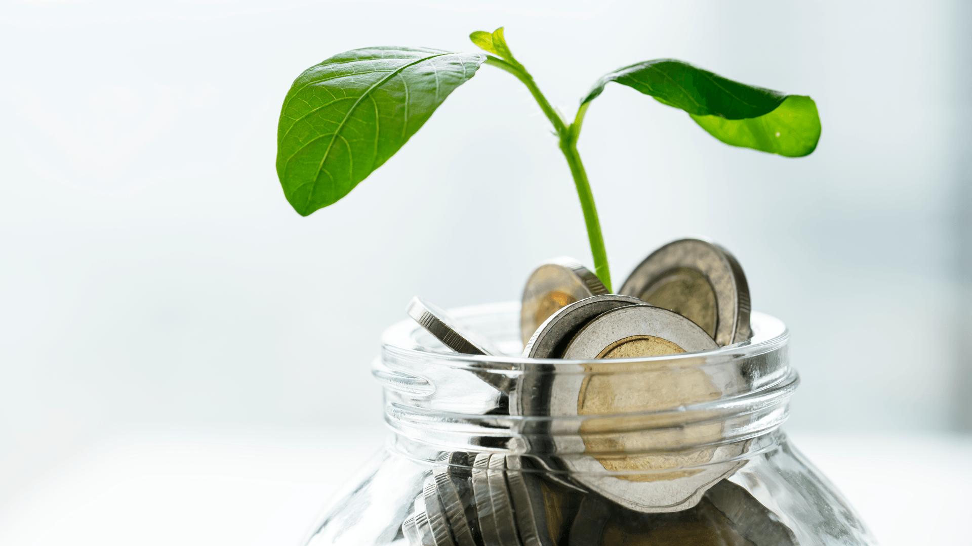 Lý do bạn cần tiết kiệm nhiều hơn thay vì trông vào lương hưu - Ảnh 3