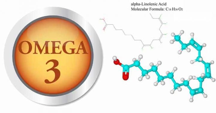 Những điều cần biết về tác dụng của Omega 3 cho sức khỏe của bạn - Ảnh 1