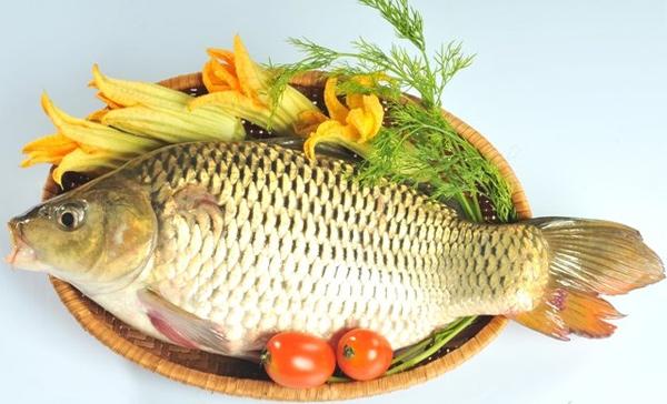 Sự thật việc bà bầu ăn cá chép con môi đỏ, da trắng và thông minh hơn người - Ảnh 2