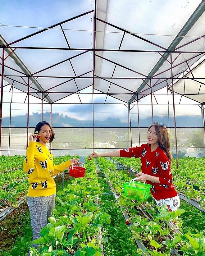 Bỏ mặc bà mẹ 'bỉm sữa' Diệp Lâm Anh, Kỳ Duyên diện áo đôi 'chị chị em em' với siêu mẫu Minh Triệu - Ảnh 2