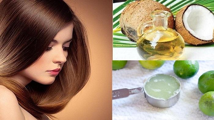Cách trị gàu bằng dầu dừa và nước cốt chanh