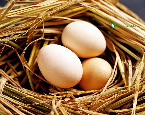 Dùng trứng gà trị rụng tóc mang lại hiệu quả cao