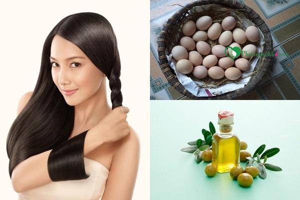 Trị rụng tóc bằng trứng kết hợp dầu oliu tự nhiên