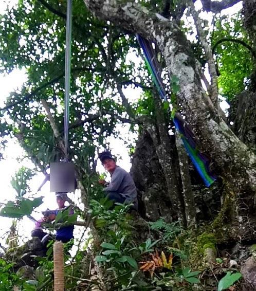 Đôi nam nữ 16 tuổi tử vong trên cây trong tư thế treo cổ tại Sơn La