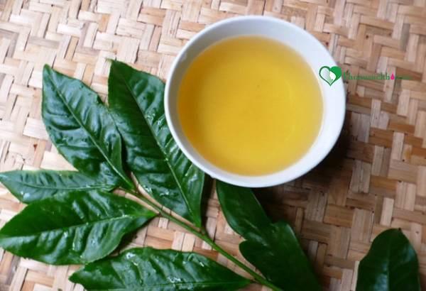 Cách uống nước trà xanh giảm cân hiệu quả bạn nên biết - Ảnh 1