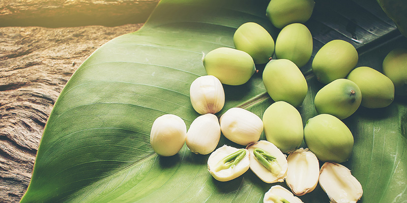 Bà bầu ăn hạt sen không chỉ trị chứng mất ngủ mà còn vô số lợi ích cho sức khỏe này - Ảnh 1