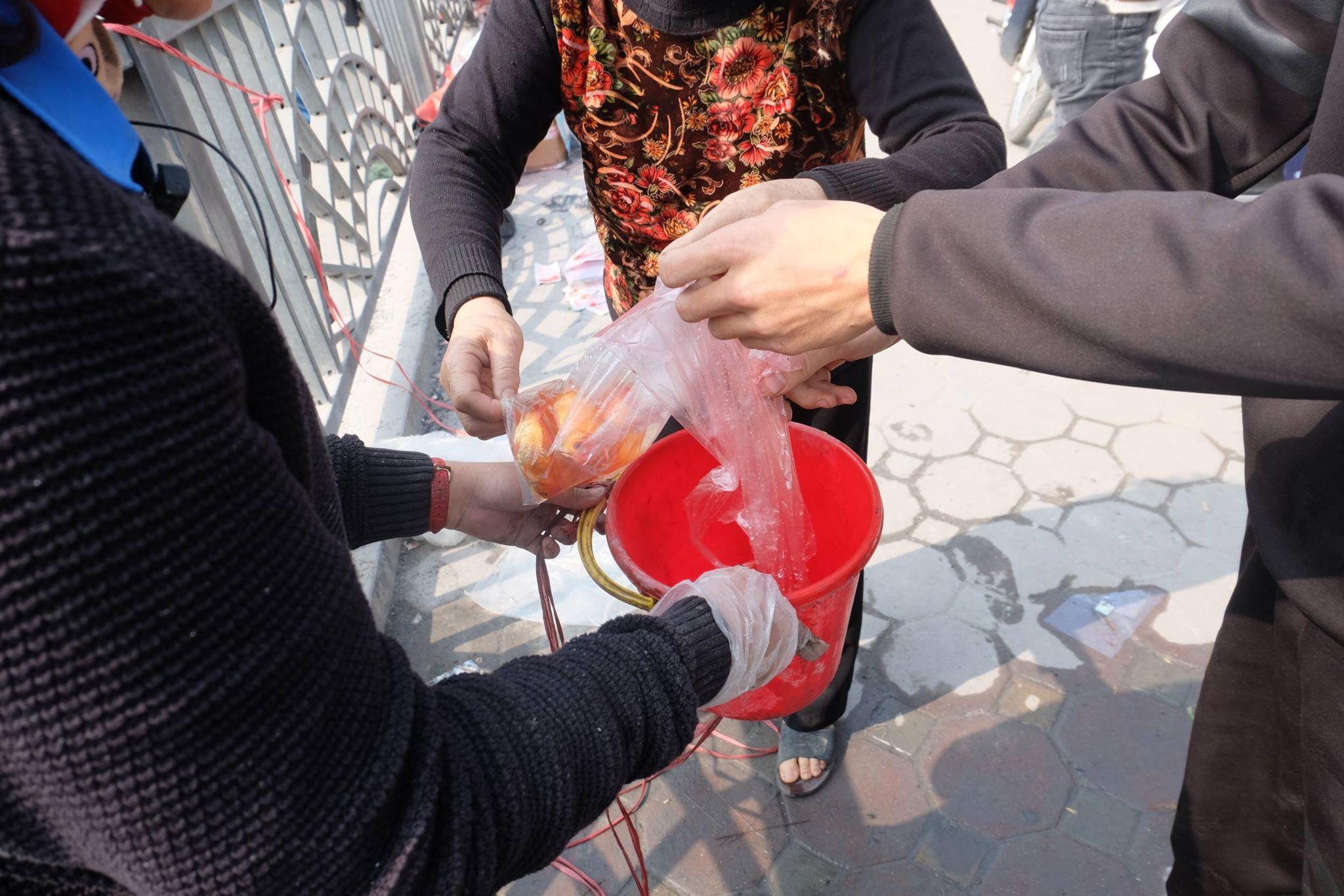 Hà Nội: Cá chép nhanh chóng 'chầu trời' sau khi bị thả xuống dòng nước ô nhiễm kinh hoàng - Ảnh 6