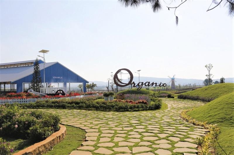 Trang trại Organic Đà Lạt – trang trại bò sữa Organic tiêu chuẩn châu Âu đầu tiên tại Việt Nam.
