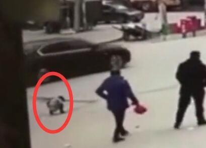 Bé gái 5 tuổi đi vệ sinh giữa đường bị xe buýt cán tử vong - Ảnh 2