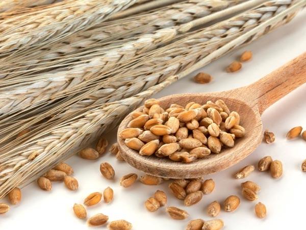 10 loại thức ăn giúp giảm cân hiệu quả cho các chị em - Ảnh 5