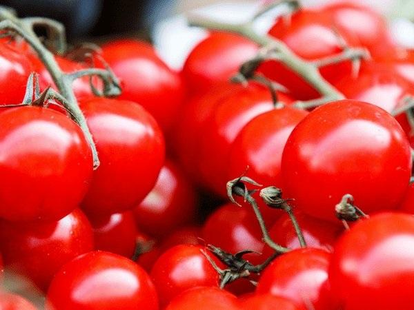 13 thực phẩm bổ sung nước cho cơ thể nên ăn vào mùa đông  - Ảnh 1