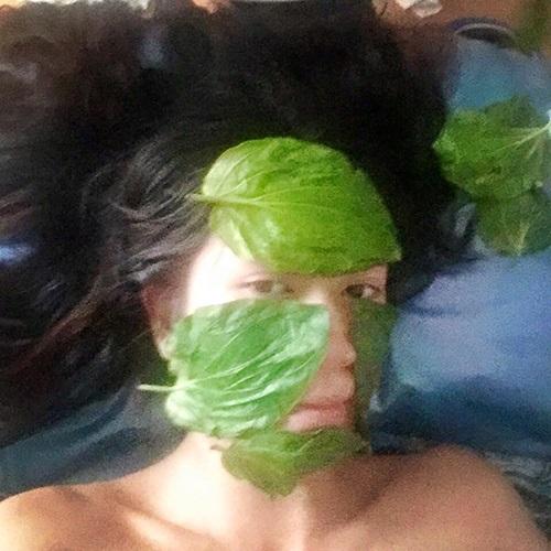 Học vợ Lý Hải cách đắp lá trầu không để chăm sóc làm đẹp da mặt